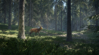 screenshot-red-deer-forest.png