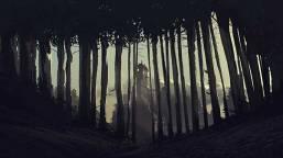 house_through_trees.jpg